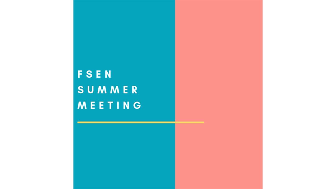 June 2019 FSEN meeting